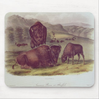 American Bison or Buffalo Mouse Mat