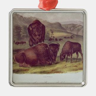 American Bison or Buffalo Silver-Colored Square Decoration
