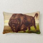 American Bison Pillows