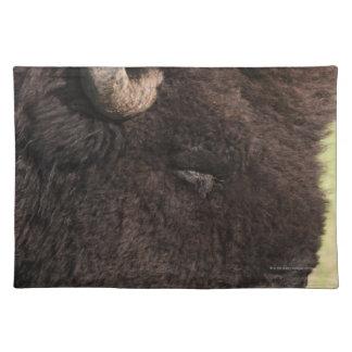 American Bison, South Dakota Placemat