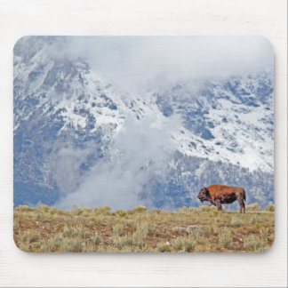 American Buffalo High in the Tetons Mouse Pad
