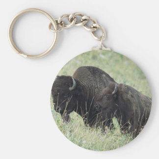 American Buffalo Key Ring