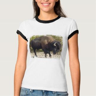 American Buffalo Ladies T-Shirt