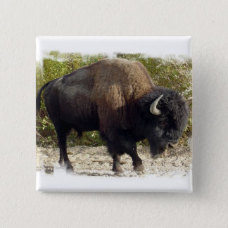 American Buffalo Square Pin