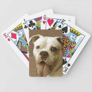 American Bulldog Bicycle Poker Cards