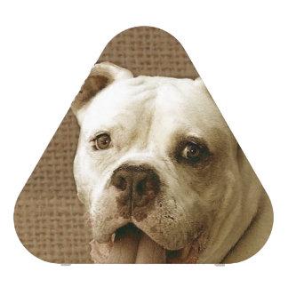American Bulldog Bluetooth Speaker