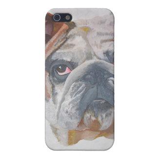 American Bulldog iPhone 5/5S Case
