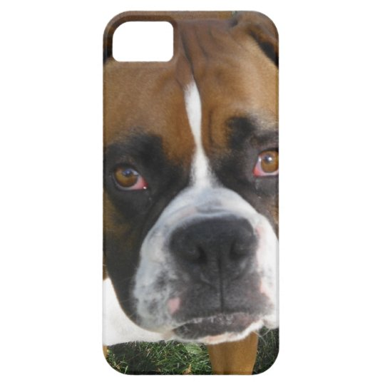 American Bulldog iPhone 5 Case
