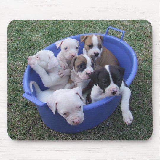 American Bulldog Puppies Mouse Mat