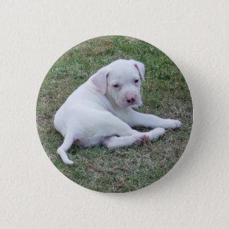 American Bulldog Puppy Button