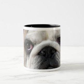 American Bulldog Two-Tone Coffee Mug