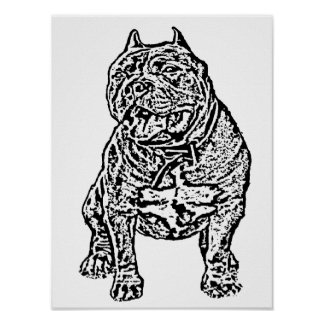 American Bully Dog Poster