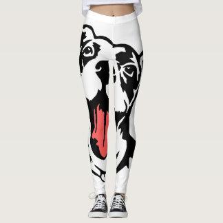 American bully/pitbull leggings