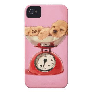 American cocker spaniel in retro kitchen scale iPhone 4 cover