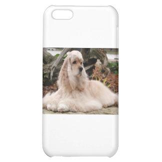American Cocker Spaniel Series iPhone 5C Cases