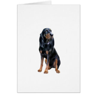 American Coon Hound - Black and Tan Greeting Card