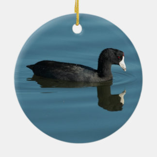 American Coot Christmas Ornament