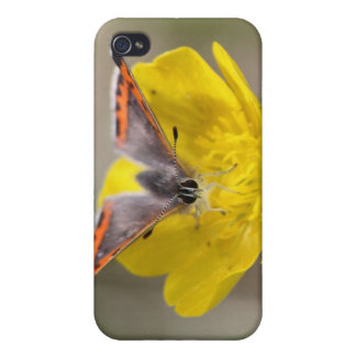 American Copper Butterfly Case For iPhone 4