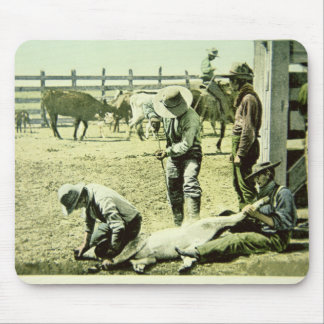 American cowboys branding a calf, c.1900 (photo) mouse pad