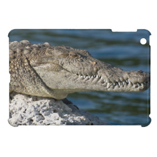 American Crocodile Cover For The iPad Mini