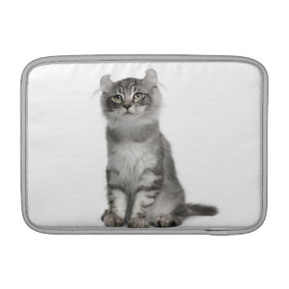 American Curl Kitten (3 months old) Sleeve For MacBook Air