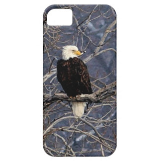 American Eagle iPhone 5 Cases