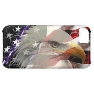 American Eagle Flag iPhone 5 Case