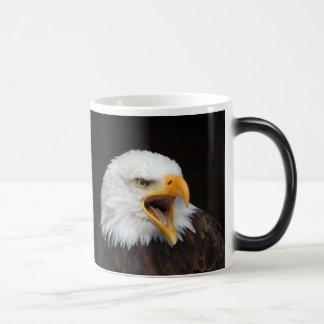 AMERICAN EAGLE - photo: Jean Louis Glineur Magic Mug