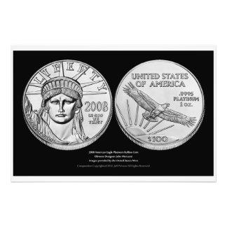 American Eagle Platinum Bullion Coins Art Photo