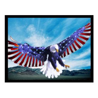 American Eagle Postcard 2