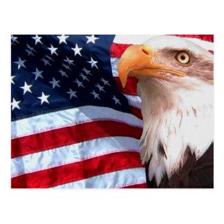 American Eagle Postcard 6