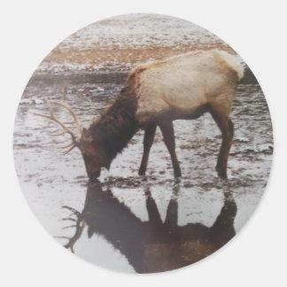 American Elk Round Sticker