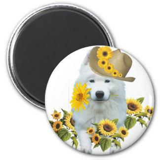 American Eskimo Daisy 6 Cm Round Magnet