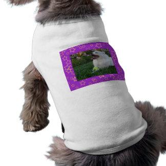 American Eskimo Dog Pet T-shirt