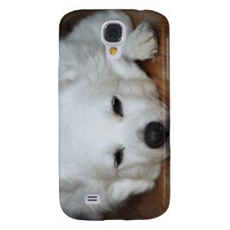 American Eskimo Dog Face Galaxy S4 Case