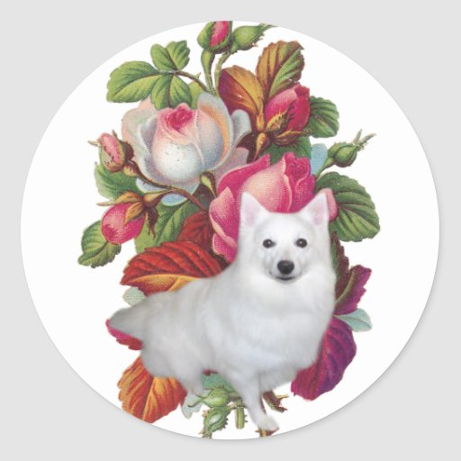 American Eskimo Dog Floral Round Stickers