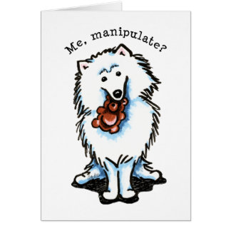 American Eskimo Dog Manipulate Greeting Cards