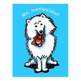 American Eskimo Dog Manipulate Postcard