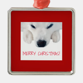 American Eskimo Dog Ornament / Spitz Dog Ornament