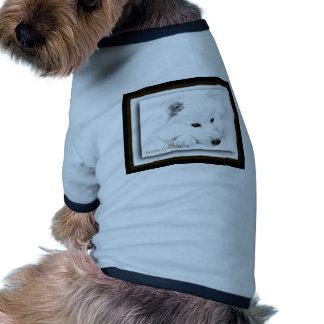 American Eskimo Pet Clothes