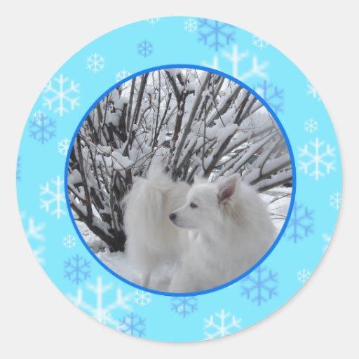American Eskimo Dog Stickers