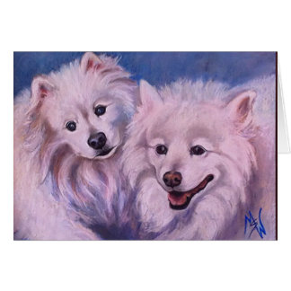 American Eskimo Dogs Card