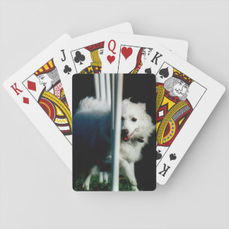American Eskimo (Eskie) weaving in Shadow Playing Cards