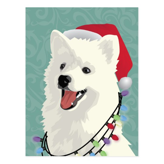 American Eskimo Samoyed Cute Puppy Dog Christmas Postcard