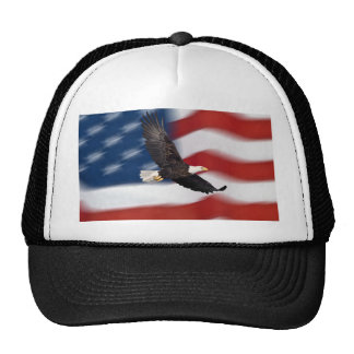 American flag and eagle cap