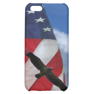 American Flag and Eagle Case For iPhone 5C