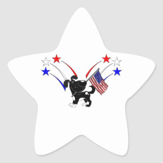 American Flag and Fireworks Stickers