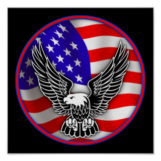 American Flag Bald Eagle United States Poster Sign