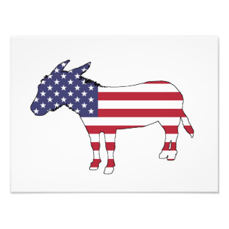 """American Flag"" Donkey Photographic Print"