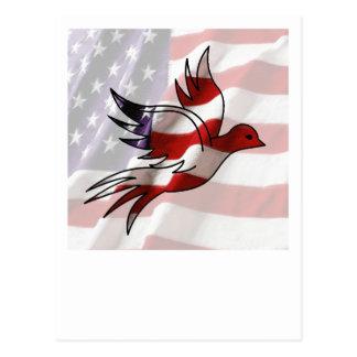 American Flag Dove Postcard
